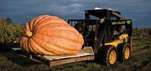 giant pumpkin forklift